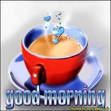 Lustige Guten Morgen Bilder