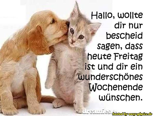 Whatsapp Sprüche Freitag