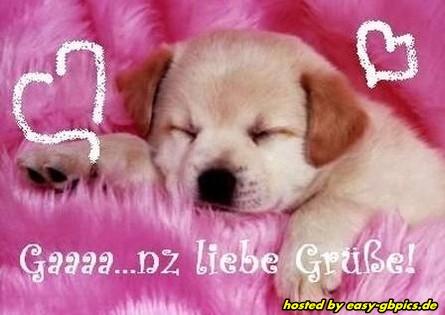 Liebe Grusse Facebook Pics Gb Bilder 5491 Whatsapp Bilder