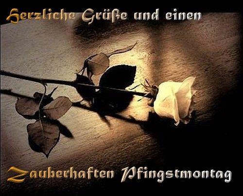 Pfingsten - Pfingstgrüße Whatapp Bilder