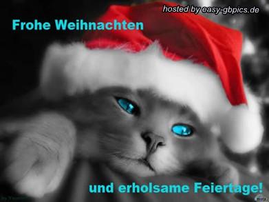 Weihnachten Whatapp Bilder