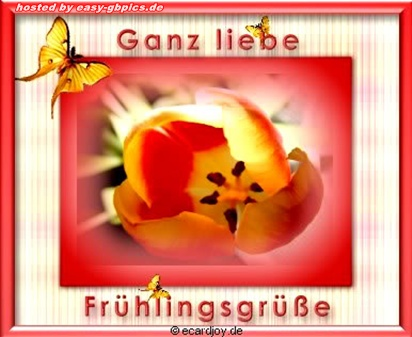 Frühling Whatapp Bilder